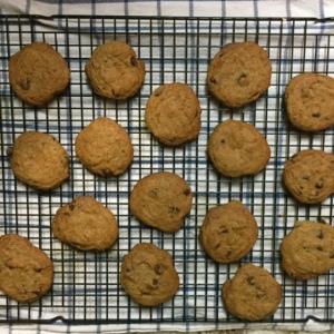 basicchocochipcookies2